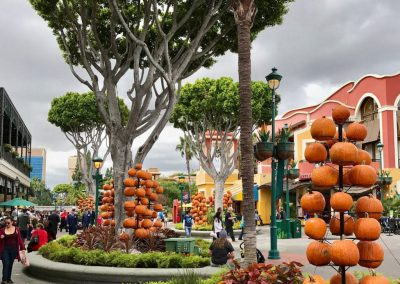 Happiest Pumpkins on Earth